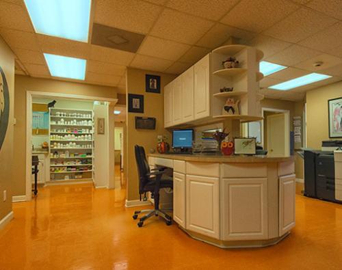 14 Patient-Intake-Coordinator-desk-and-Doctors-Assistant-desk