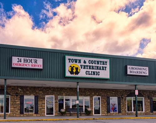 7 Front-entrance-to-Town-and-Country-Veterinary-Clinic